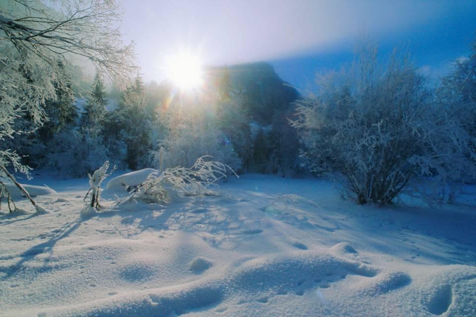 Winter Wonderland in the Bernese Oberland