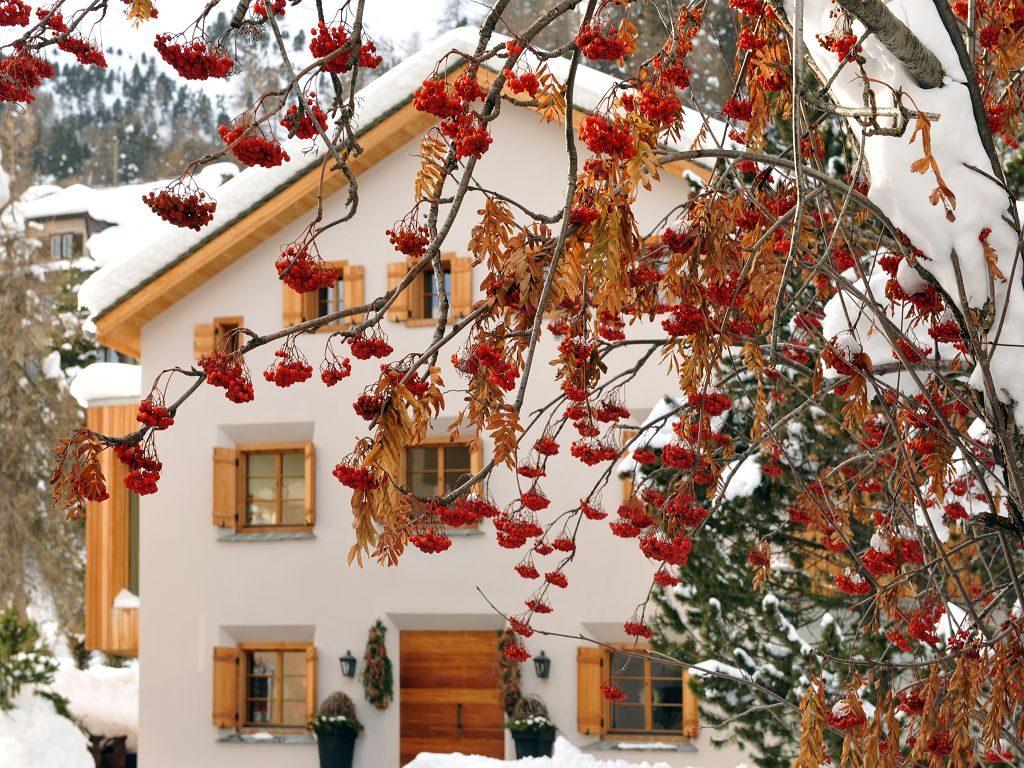 Chalet Chesetta in St. Moritz, Swiss Alps