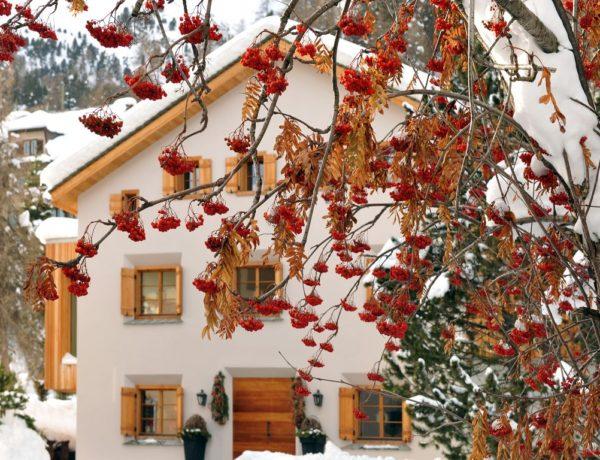 Chalet Chesetta St.Moritz