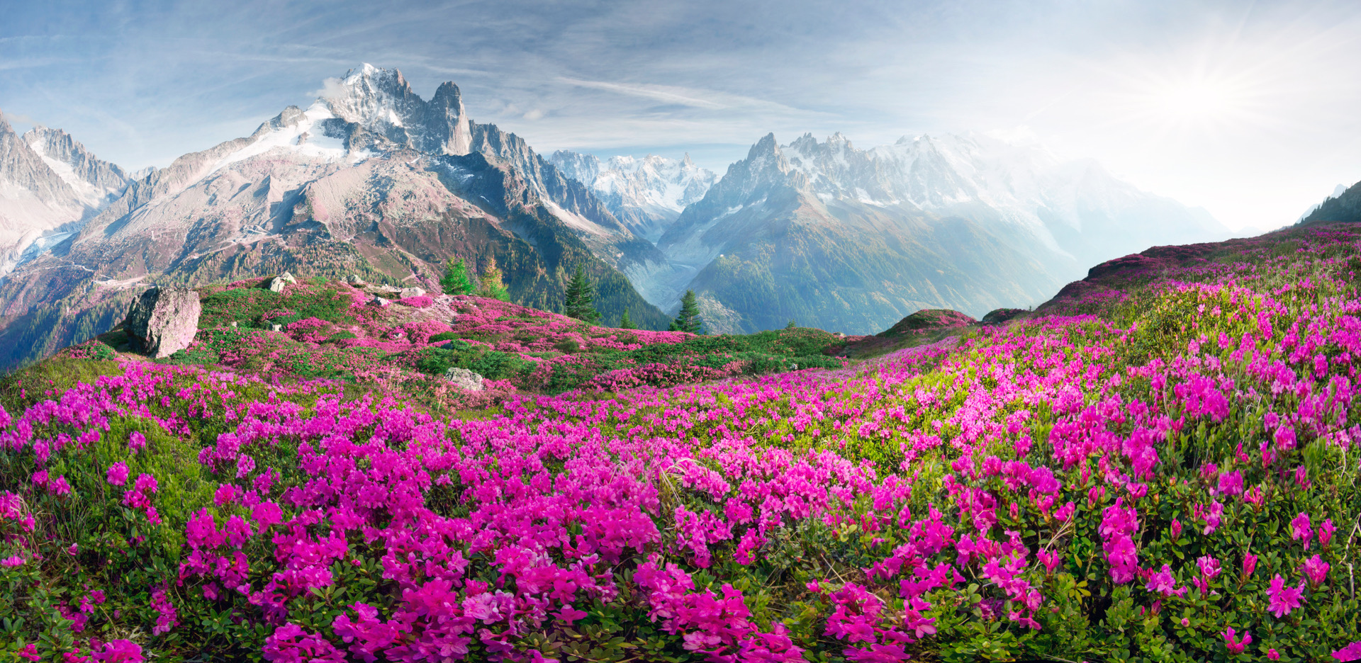 Chamonix in Savoy, a perfect choice for summer holidays