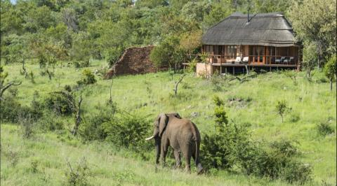 Safari lodges de lujo