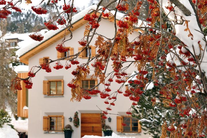 Chalet Chesetta, St.Moritz-Silvaplana, Swiss Alps