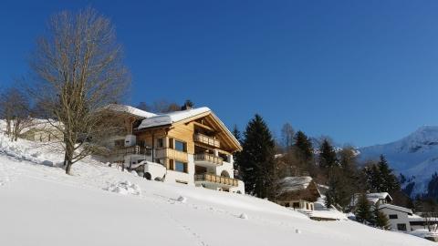 Chesa Falcun  Klosters